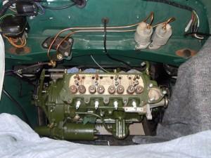 DSCN5969